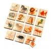 ของเล่นไม้ Voila : เรียนรู้ต่อภาพสัตว์