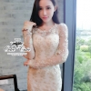 Champagne divine soft flowers lace dress