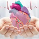 วิธีการดูแลหัวใจตัวเอง