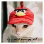 หมวกน้องหมาแฟนซี Angry Bird พร้อมส่ง