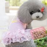 ชุดกระโปรงสุนัข Sweet Pink พร้อมส่ง