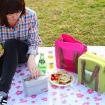 กระเป๋าเก็บอุณหภูมิ ถนอมอาหาร และเครืองดืมต่างๆ แบบพกพา