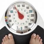 วัฏจักรแห่งความอ้วน