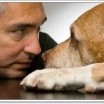 สุดยอดเทคนิคการฝึกน้องหมาของผู้ฝึกสุนัขชื่อดังของโลก