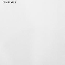 วอลเปเปอร์พื้นเรียบสีขาวเทกเจอร์เม็ดละเอียด THA-B53