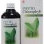 PHYTO Chlorophyll ไฟโต คลอโรฟิลล์ (เครื่องดื่ม คลอโรฟิลล์บริสุทธิ์ 100% จากธรรมชาติ) thumbnail 1
