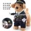 ชุดแฟนซีสุนัข ชุดตำรวจ (พร้อมส่ง) thumbnail 1
