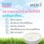erci Bulgarian Yogurt Whitening Cream Mask ครีมมาส์กบัลแกเรียโยเกริต์ สูตรพิเศษ thumbnail 4