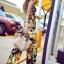 Seoul Secret Say's Tropical Blossom Playsuit thumbnail 3