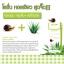 Aloe snail Body lotion SkinHD โลชั่นอโลเวลาผสมเมือกหอยทาก thumbnail 3