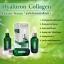 เซรั่มฟิลเลอร์ Filler Hyaluron Collagen Eseence Serum (30 ml.) thumbnail 3