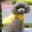 ชุดกระโปรงสุนัข Sweet Yellow พร้อมส่ง thumbnail 2