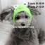 หมวกสุนัขแฟนซี ลายกบ สีเขียว พร้อมส่ง thumbnail 1