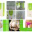 HYLI (ไฮลี่) ผลิตภัณฑ์เสริมอาหาร สำหรับผู้หญิง thumbnail 4