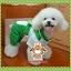 PRE เสื้อผ้าน้องหมา ชุดน้องหมาสี่ขาเคโระ thumbnail 2
