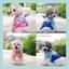 PRE เสื้อผ้าน้องหมา ชุดสี่ขาแฟนซีแต่งหัวกระต่าย thumbnail 2