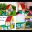 บ้านเต้นท์ sunny house thumbnail 1