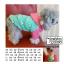 เสื้อกันหนาวสุนัข Paul Frank มีฮูท (พร้อมส่ง) thumbnail 1