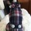 เสื้อสุนัขลายสก๊อตสไตล์ผู้ดี พร้อมปลอกคอหูกระต่าย พร้อมส่ง thumbnail 3