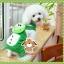PRE เสื้อผ้าน้องหมา ชุดน้องหมาสี่ขาเคโระ thumbnail 1
