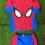 ชุดว่ายน้ำ Spider man มาพร้อมหมวกคลุมผม และถุงผ้า สินค้าถูกลิขสิทธิ์ ของแท้ ส่งฟรี thumbnail 1