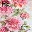 วอลเปเปอร์ลายดอกไม้ CDR-S48W thumbnail 1