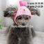 หมวกสุนัขแฟนซี ลายกระต่าย สีชมพู พร้อมส่ง thumbnail 1
