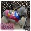 เสื้อกันหนาวสุนัข อันปังแมน มีฮูท (พร้อมส่ง) thumbnail 1