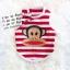 เสื้อกล้ามน้องหมา Paul Frank ลายขวาง สีขาวแดง พร้อมส่ง thumbnail 1