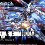HGCE 1/144 FREEDOM GUNDAM (REVIVE)