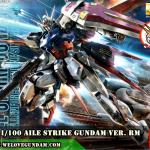 MG 1/100 AILE STRIKE GUNDAM Ver. RM