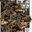 RG 1/144 GUNDAM ASTRAY GOLD FRAME AMATSU MINA thumbnail 11