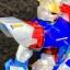 P-BANDAI HGBF 1/144 STAR BUILD STRIKE GUNDAM Ver.RG system thumbnail 3