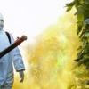 ข้อควรระวังในการใช้สารควบคุมวัชพืช