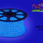 ไฟสายยาง SMD 5050 (50 m.) สีฟ้า (ท่อแบน)