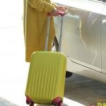 ผ้าคลุมกระเป๋าเดินทาง ผ้ายืด สีเรียบ