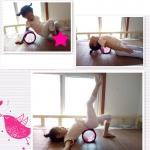 (พรีออเดอร์) Yoga Wheel วงล้อสำหรับโยคะ YK9017P(15*10cm)