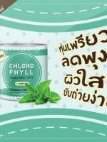 คลอโรมิ้นต์ คลอโรฟิลล์ Chloro Mintขจัดสารพิษในร่างกาย