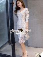 Lovely V Lace Dress