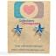 ต่างหูพลาสติก,ต่างหูก้านพลาสติก,ต่างหูเด็ก E29008 Blue Turquoise Star Earring ต่างหู ราคาถูก thumbnail 1