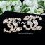 พร้อมส่ง Chanel Earring ต่างหูชาแนลงานเพชรมาคี thumbnail 1