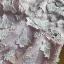 ชดเดรสเกาหลี พร้อมส่งเดรสผ้าเครปสีชมพูปักผีเสื้อตกแต่งสร้อยคอมุก thumbnail 13