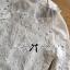 เสื้อผ้าเกาหลี พร้อมส่งเชิ้ตขาวตกแต่งผ้าตาข่ายและผ้าปักลายดอกไม้ thumbnail 8