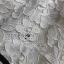 ชุดเดรสเกาหลี พร้อมส่งเดรสผ้าลูกไม้สีขาวจากแบรนด์Self-Portrait thumbnail 11