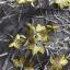 ชุดเดรสเกาหลี พร้อมส่งค็อกเทลเดรสผ้าลูกไม้สีเทาทอลายดอกไม้สีเหลือง thumbnail 15