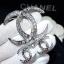 พร้อมส่ง Chanel Brooch& Earring เข็มกลัด/ต่างหู thumbnail 1