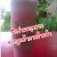 ผงชากุหลาบป่นหยาบ (กลิ่นธรรมชาติ เกรดA) thumbnail 7