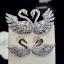 พร้อมส่ง Diamond Brooch & Earring เข็มกลัดเพชรและต่างหู thumbnail 2