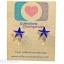 ต่างหูพลาสติก,ต่างหูก้านพลาสติก,ต่างหูเด็ก E29009 Dark Blue Star Earring ต่างหูแฟชั่น thumbnail 1