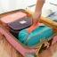 "TB58 กระเป๋าใส่ชุดชั้นใน ""Pastel Underwear Pouch"" thumbnail 4"
